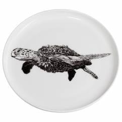 MARINI FERLAZZO Teller 20cm, Green Sea Turtle, Premium-Keramik, in Geschenkbox